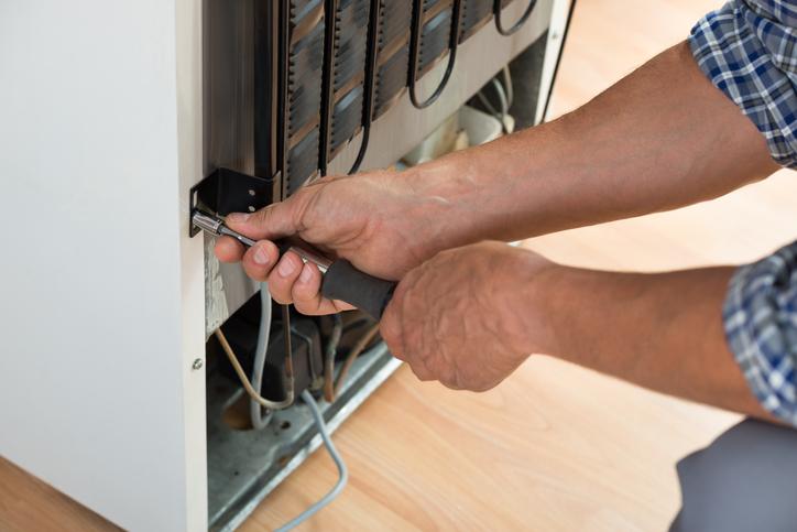 Whirlpool Refrigerator Repair Glendale, Whirlpool Refrigerator Service, Whirlpool Fridge Customer Care, Whirlpool Dryer Repair Near Me, Whirlpool Cabrio Washer Repair, Whirlpool Cabrio Washer Ul Fix, Whirlpool Dryer Repair Service, Repair Clinic Whirlpool Washer, Whirlpool Oven Touchpad Repair, Whirlpool Refrigerator Support, Whirlpool Freeze Customer Care, Whirlpool Stove Repair Near Me, Whirlpool Cabrio Washer 5D Fix, Whirlpool Customer Care Fridge, Whirlpool Repairman In My Area, Whirlpool Range Repair Service, Whirlpool Washing Machine Care, Whirlpool Clothes Dryer Repair, Roper Dryer Roller Replacement, Whirlpool Washer Clutch Repair, Whirlpool Wfc7500Vw2 Diagnostic, Whirlpool Gas Dryer Not Heating, Whirlpool Washer Repair Near Me, Whirlpool Fridge Repair Near Me, Whirlpool Washer Repair Service, Whirlpool Fridge Repair Service, Whirlpool Refrigerator Helpline, Whirlpool Electric Dryer Repair, Whirlpool Refrigerator Mechanic, Whirlpool Clothes Washer Repair, Whirlpool Gold Ice Maker Repair, Whirlpool Dryer Service Near Me, Whirlpool Cabrio Repair Near Me, Whirlpool Electric Range Repair, Whirlpool Microwave Oven Repair, Roper Dryer Element Replacement, Whirlpool Dishwasher Technician, Whirlpool Washer Agitator Loose, Whirlpool Dryer Fan Replacement, Whirlpool Cae2743Bq0 Diagnostic, Whirlpool Washing Machine Repair, Whirlpool Repair Service Near Me, Whirlpool Fridge Freezer Repairs, Whirlpool Washer Service Near Me, Whirlpool Thin Twin Dryer Repair, Whirlpool Washer Agitator Repair, Whirlpool Fridge Service Near Me, Whirlpool Wed5000Dw2 Not Heating, Whirlpool Wed4815Ew1 Not Heating, Whirlpool Dryer Seal Replacement, Whirlpool Freezer Repair Near Me, Whirlpool Washer Warranty Repair, Fixing Whirlpool Washing Machine, Whirlpool Service Repair Near Me, Whirlpool Top Load Washer Repair, Whirlpool Duet Replace Door Seal, Whirlpool Trash Compactor Repair, Whirlpool Duet Dryer Maintenance,